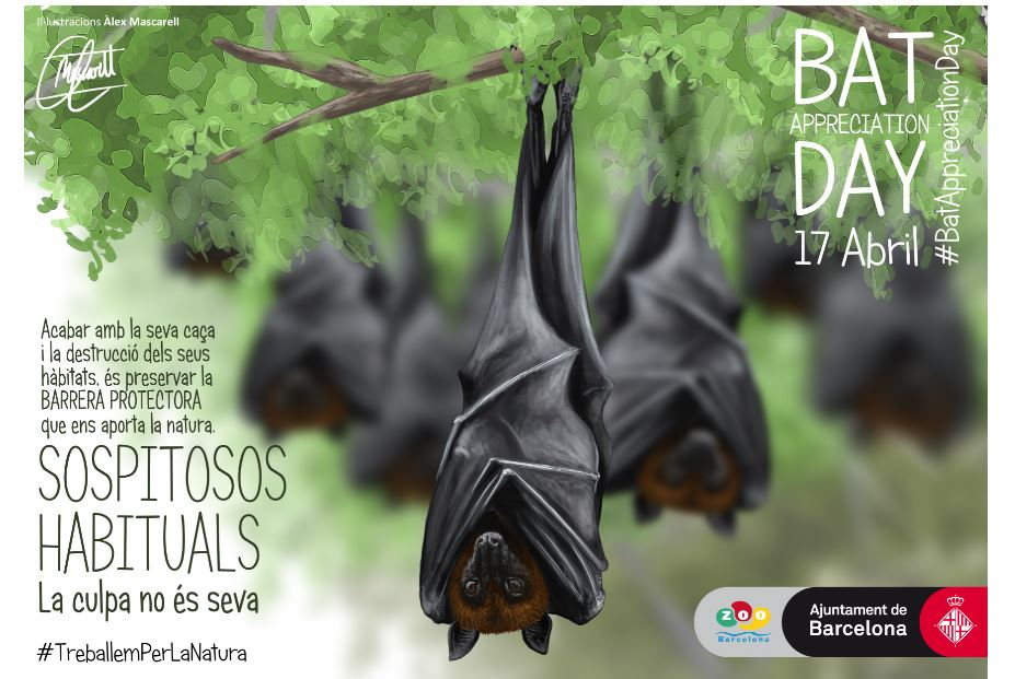 Bat Appreciation Day