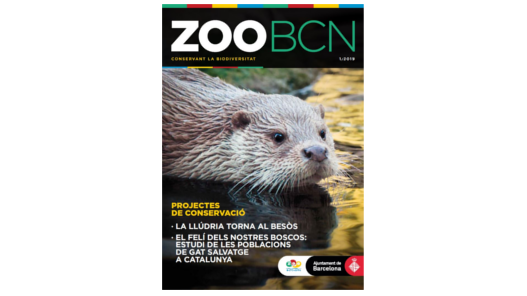 Revista ZOO BCN